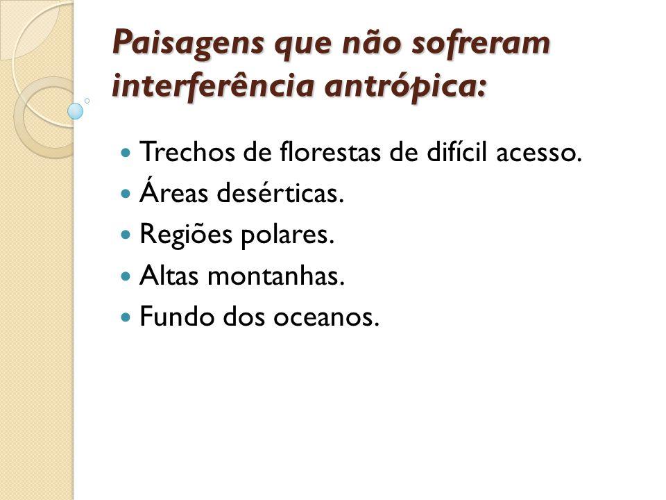 Paisagens que não sofreram interferência antrópica: