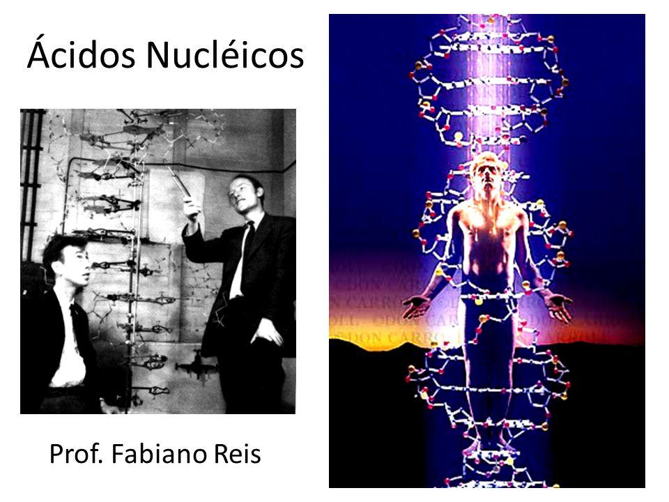 Ácidos Nucléicos Prof. Fabiano Reis