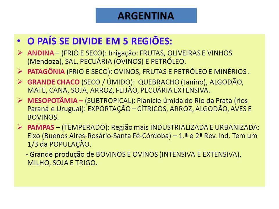 ARGENTINA O PAÍS SE DIVIDE EM 5 REGIÕES: