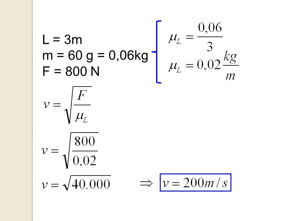 L = 3m m = 60 g = 0,06kg F = 800 N