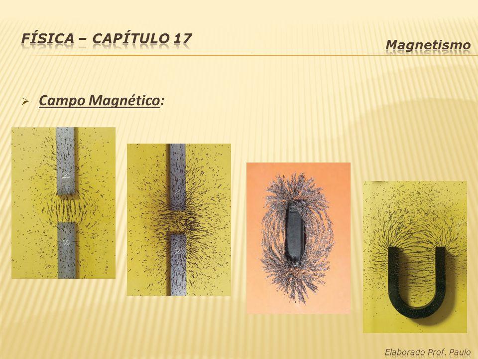 Física – capítulo 17 Magnetismo Campo Magnético: Elaborado Prof. Paulo