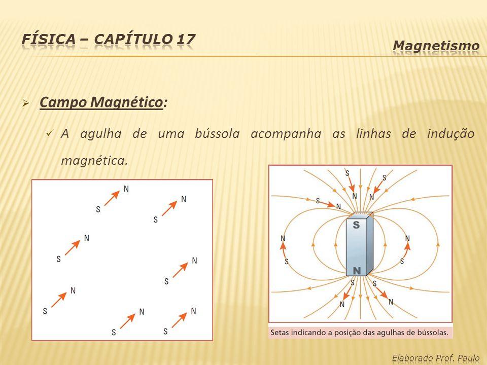 Física – capítulo 17 Magnetismo. Campo Magnético: A agulha de uma bússola acompanha as linhas de indução magnética.