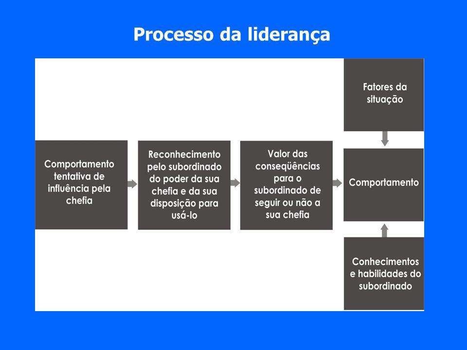 Processo da liderança
