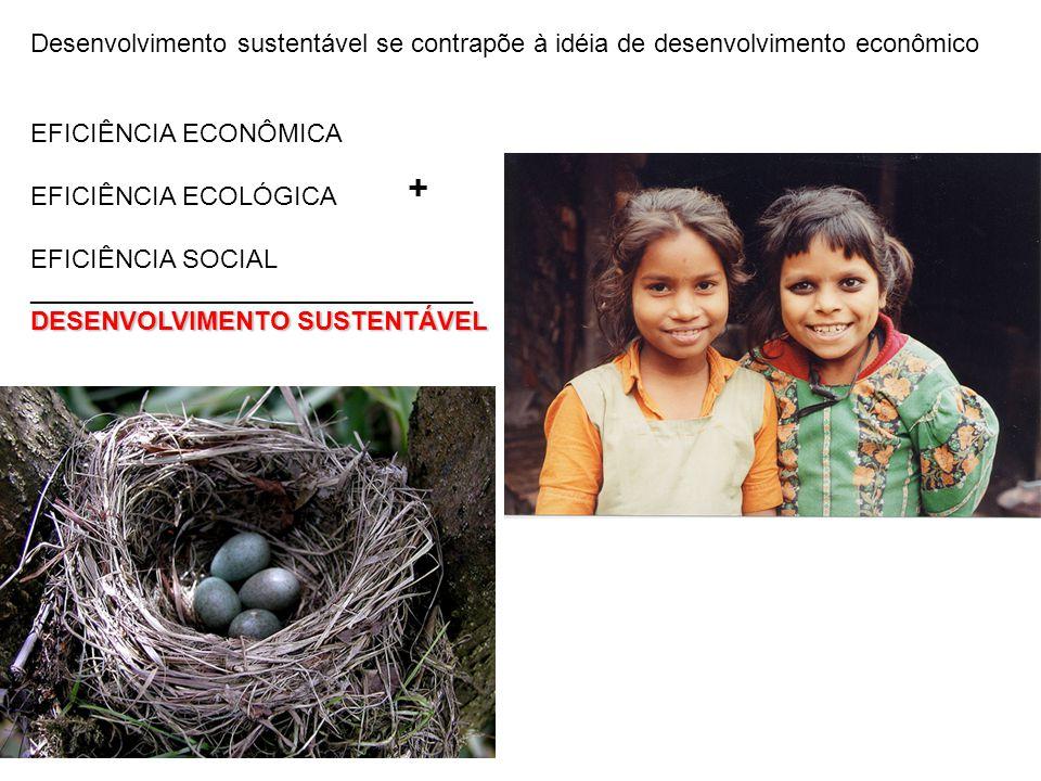 Desenvolvimento sustentável se contrapõe à idéia de desenvolvimento econômico
