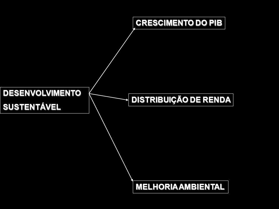 CRESCIMENTO DO PIB DESENVOLVIMENTO SUSTENTÁVEL DISTRIBUIÇÃO DE RENDA MELHORIA AMBIENTAL