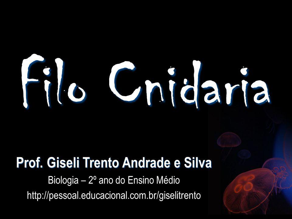 Prof. Giseli Trento Andrade e Silva