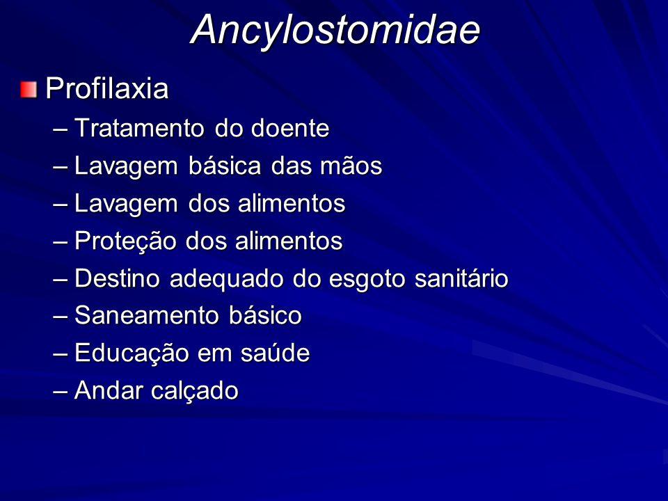 Ancylostomidae Profilaxia Tratamento do doente Lavagem básica das mãos
