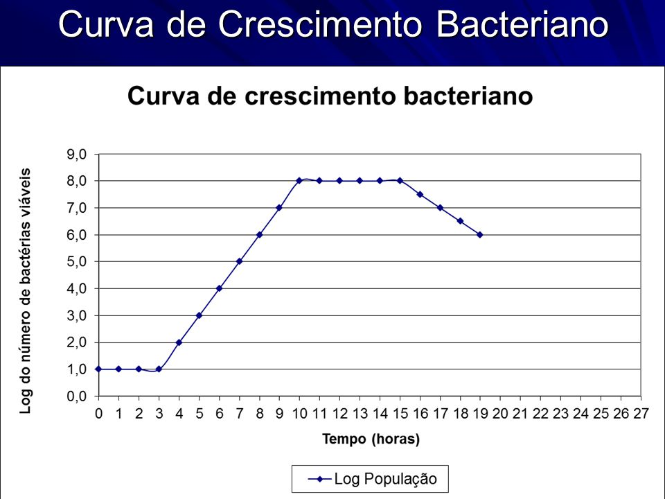 Curva de Crescimento Bacteriano