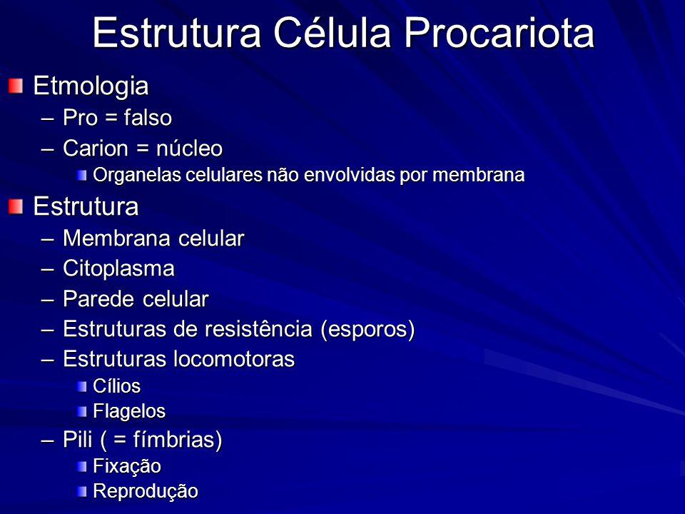 Estrutura Célula Procariota