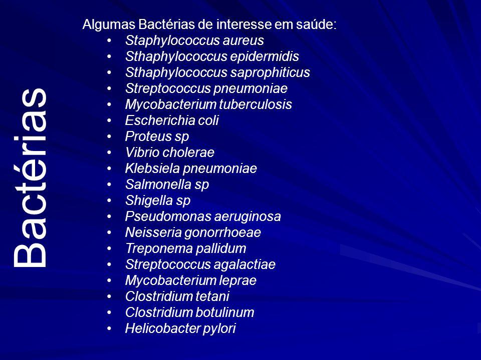 Bactérias Algumas Bactérias de interesse em saúde: