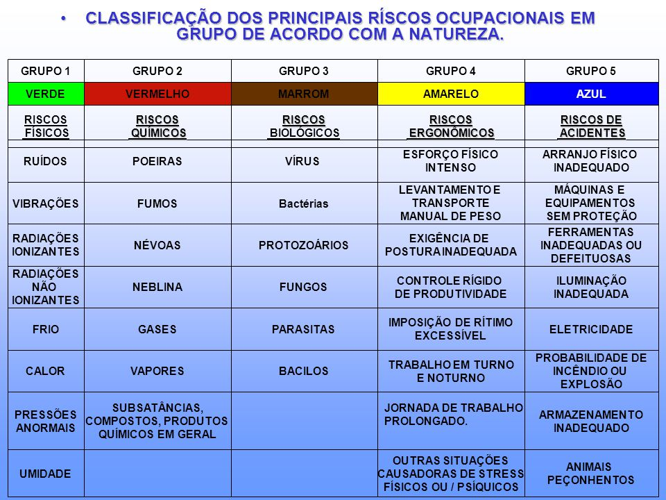 CLASSIFICAÇÃO DOS PRINCIPAIS RÍSCOS OCUPACIONAIS EM GRUPO DE ACORDO COM A NATUREZA.