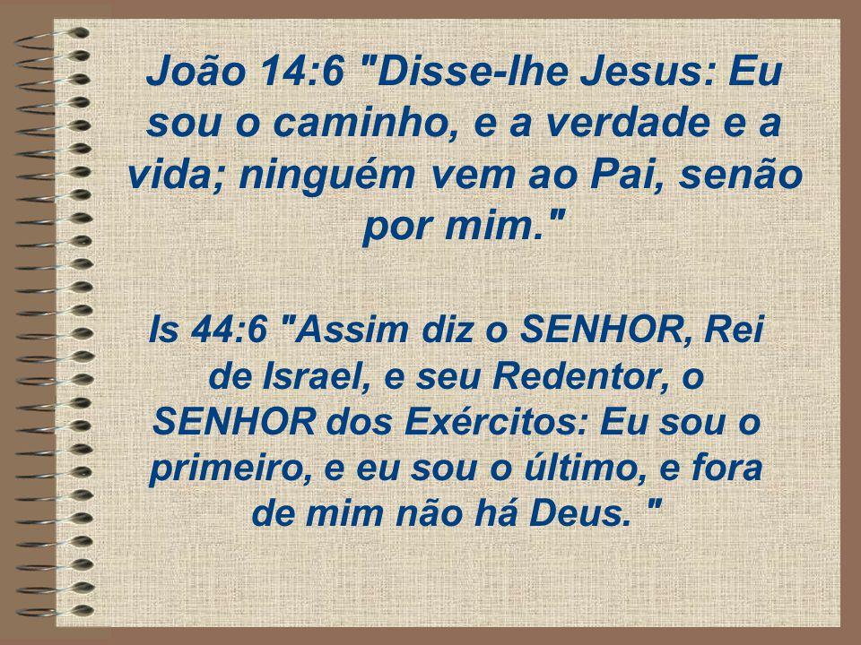 João 14:6 Disse-lhe Jesus: Eu sou o caminho, e a verdade e a vida; ninguém vem ao Pai, senão por mim.
