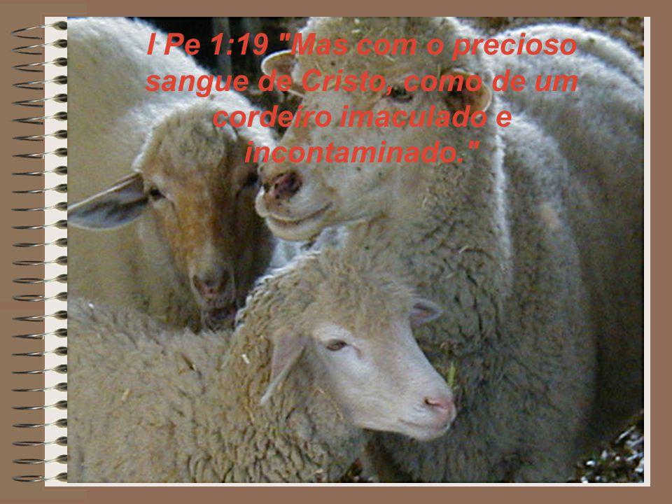 I Pe 1:19 Mas com o precioso sangue de Cristo, como de um cordeiro imaculado e incontaminado.