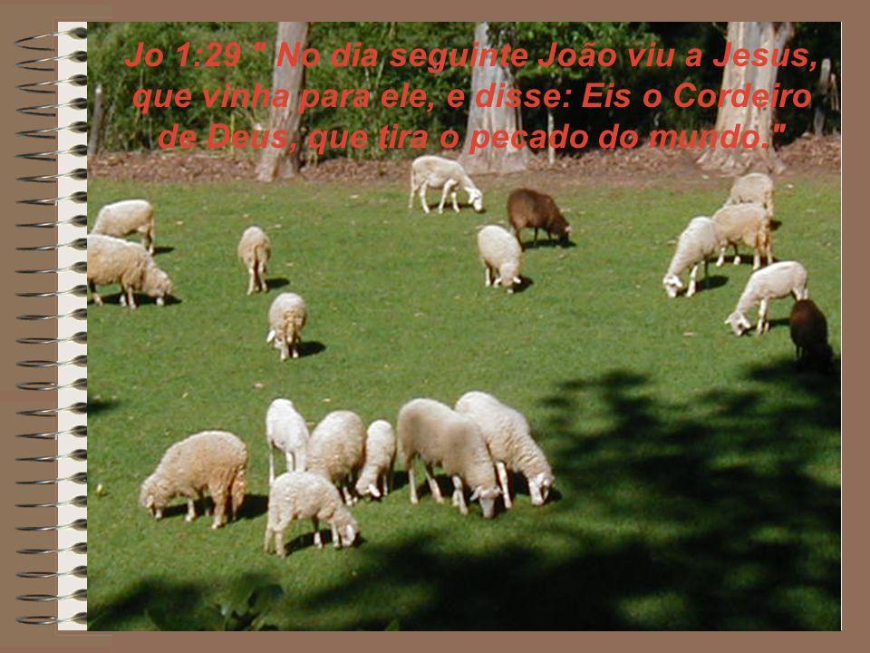 Jo 1:29 No dia seguinte João viu a Jesus, que vinha para ele, e disse: Eis o Cordeiro de Deus, que tira o pecado do mundo.