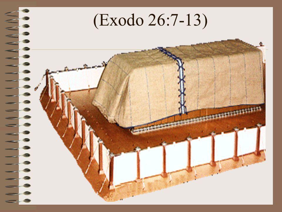 (Exodo 26:7-13)