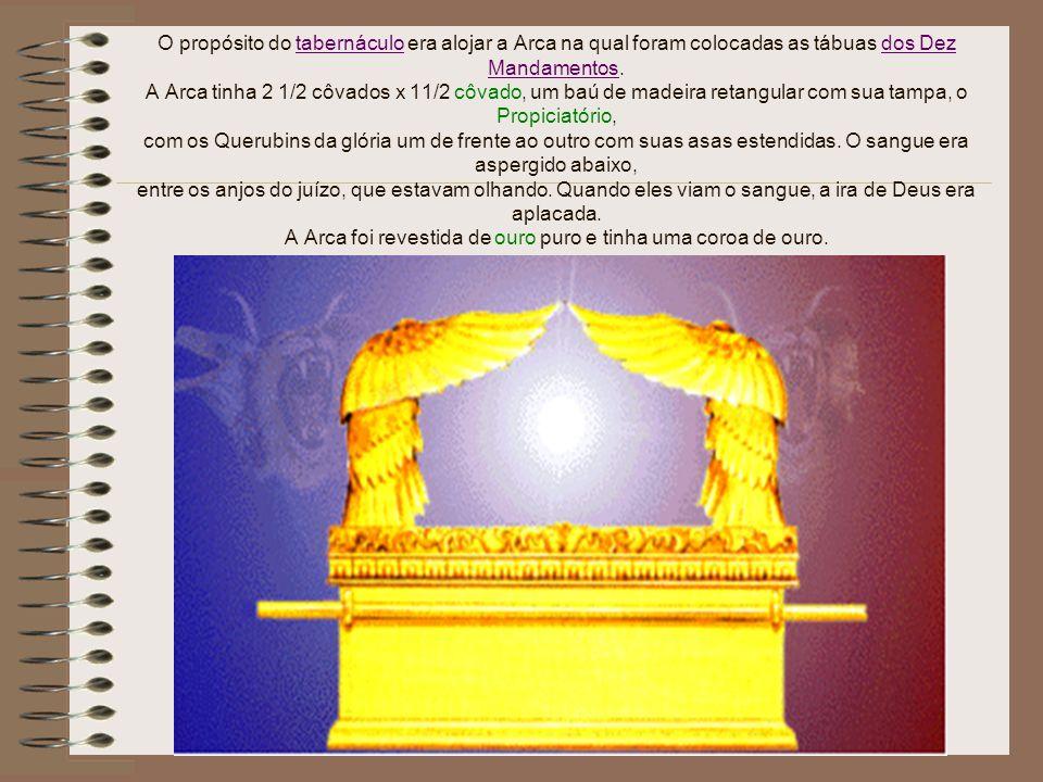 O propósito do tabernáculo era alojar a Arca na qual foram colocadas as tábuas dos Dez Mandamentos.