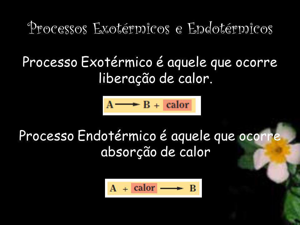 Processos Exotérmicos e Endotérmicos