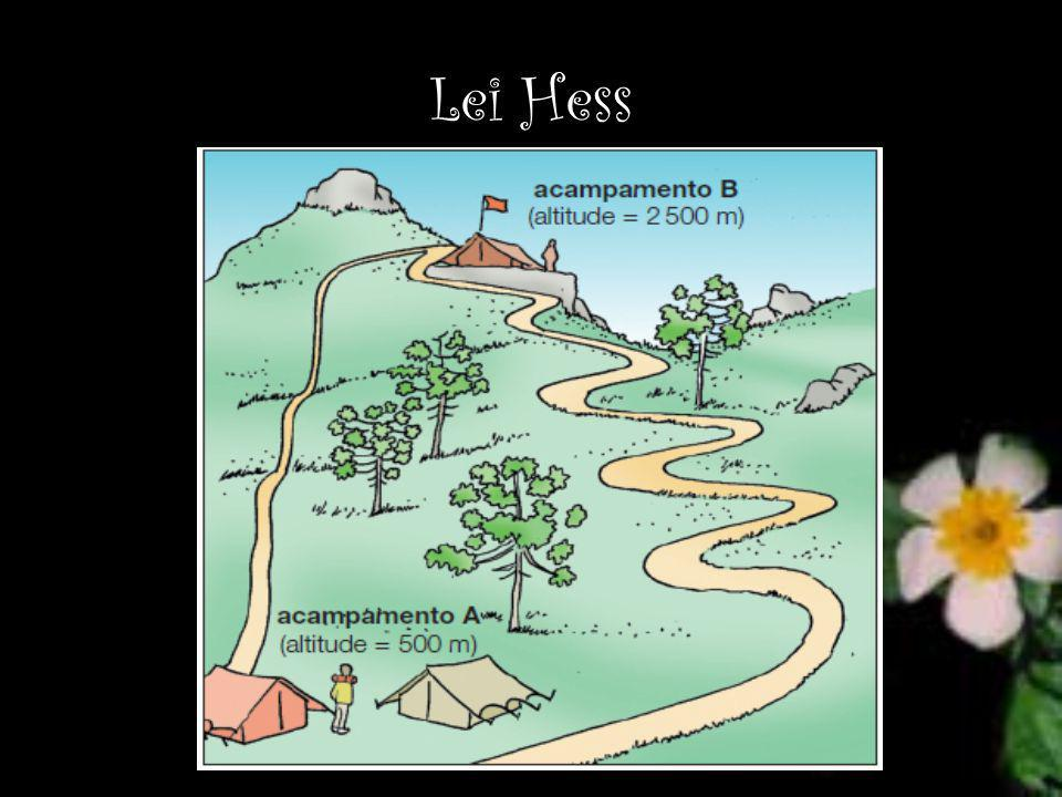 Lei Hess