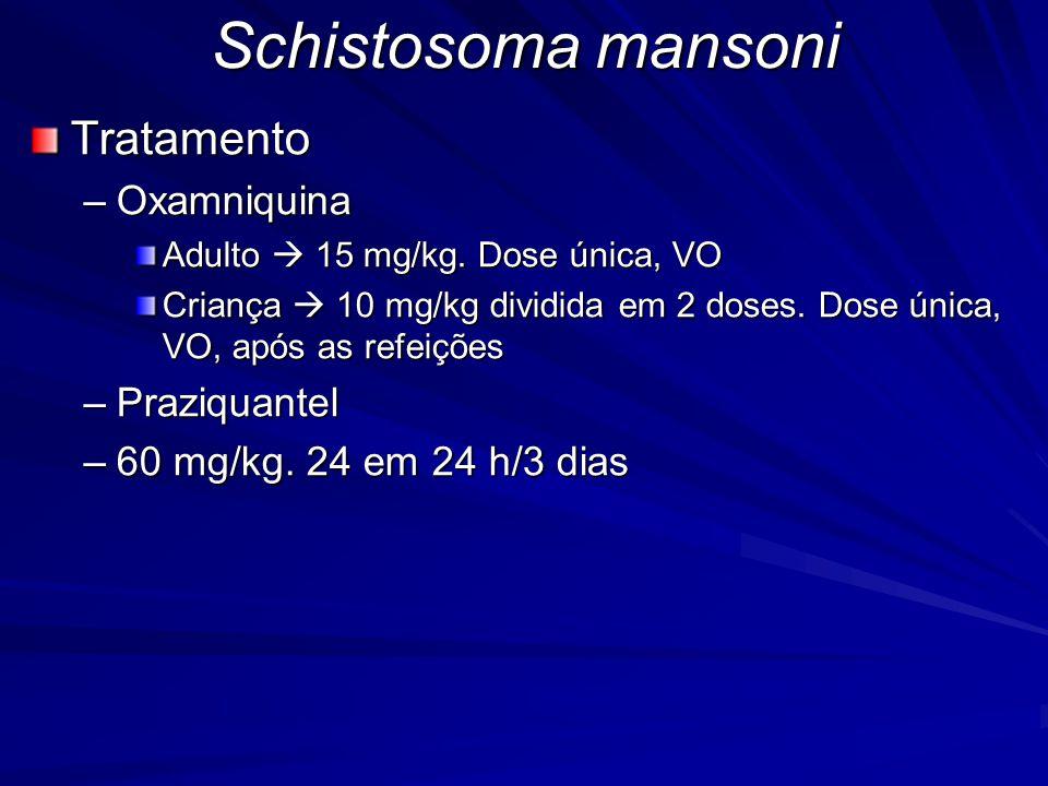 Schistosoma mansoni Tratamento Oxamniquina Praziquantel