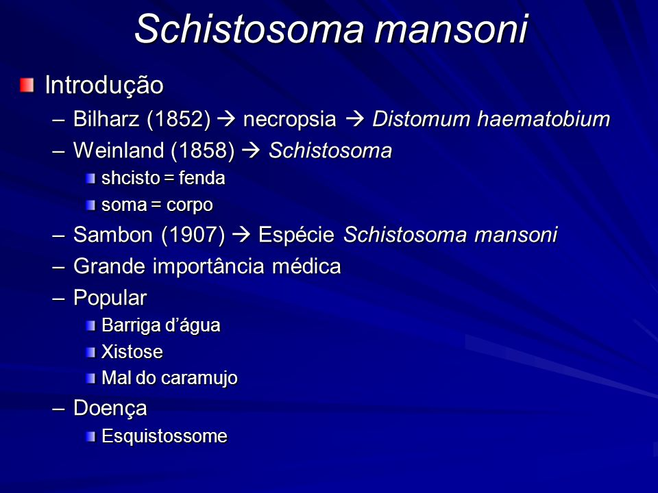 Schistosoma mansoni Introdução