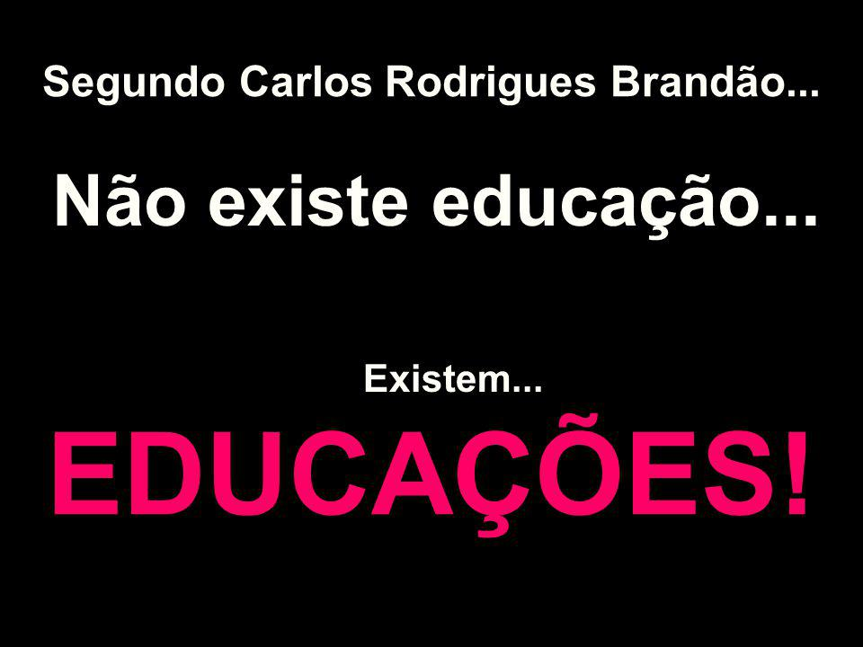 Segundo Carlos Rodrigues Brandão...