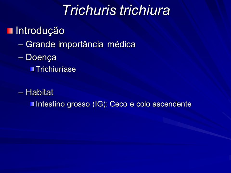 Trichuris trichiura Introdução Grande importância médica Doença