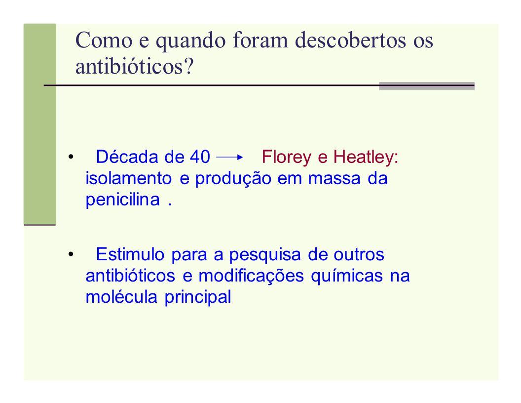 Como e quando foram descobertos os antibióticos
