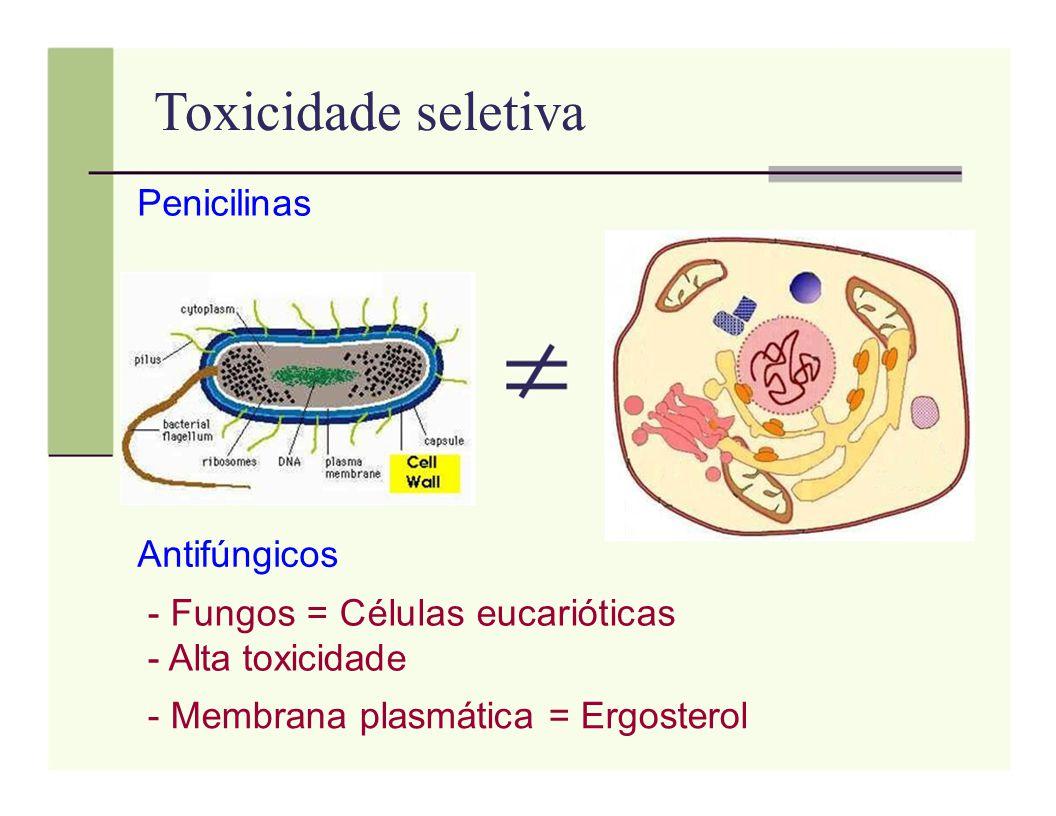 Toxicidade seletiva Penicilinas Antifúngicos