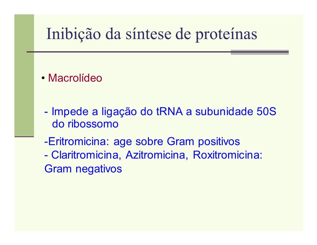 Inibição da síntese de proteínas