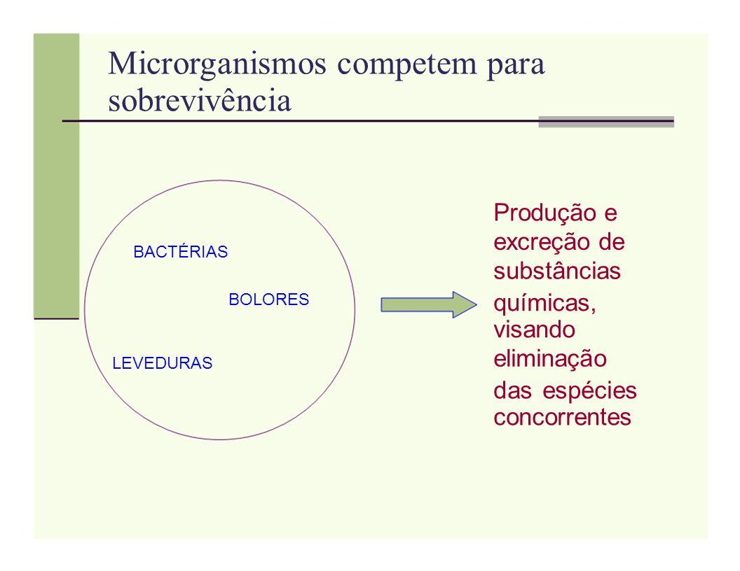 Microrganismos competem para sobrevivência