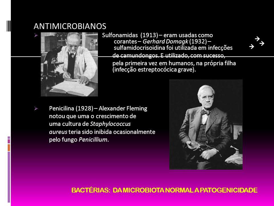 BACTÉRIAS: DA MICROBIOTA NORMAL A PATOGENICIDADE