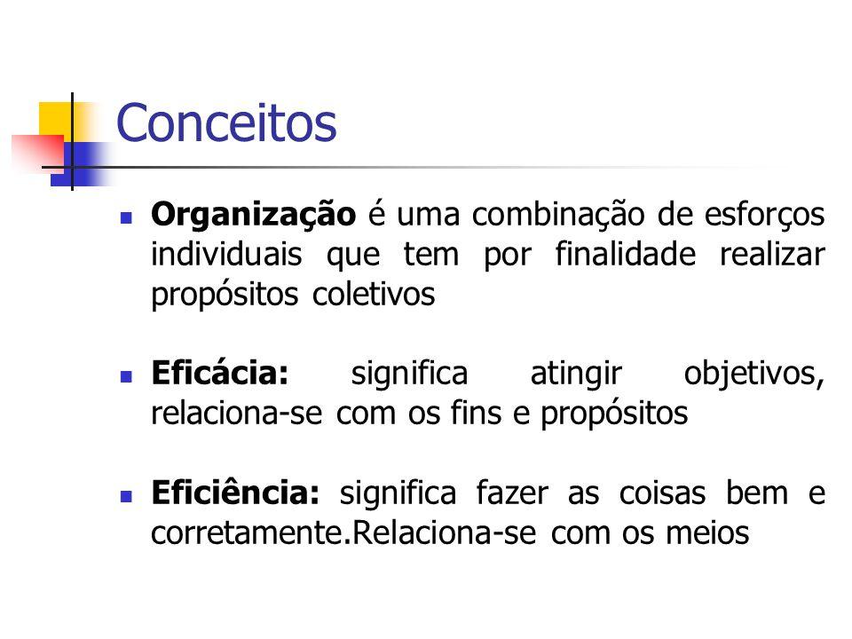Conceitos Organização é uma combinação de esforços individuais que tem por finalidade realizar propósitos coletivos.