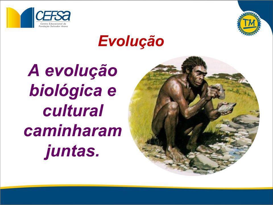 A evolução biológica e cultural caminharam juntas.