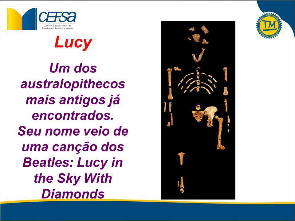 Lucy Um dos australopithecos mais antigos já encontrados.