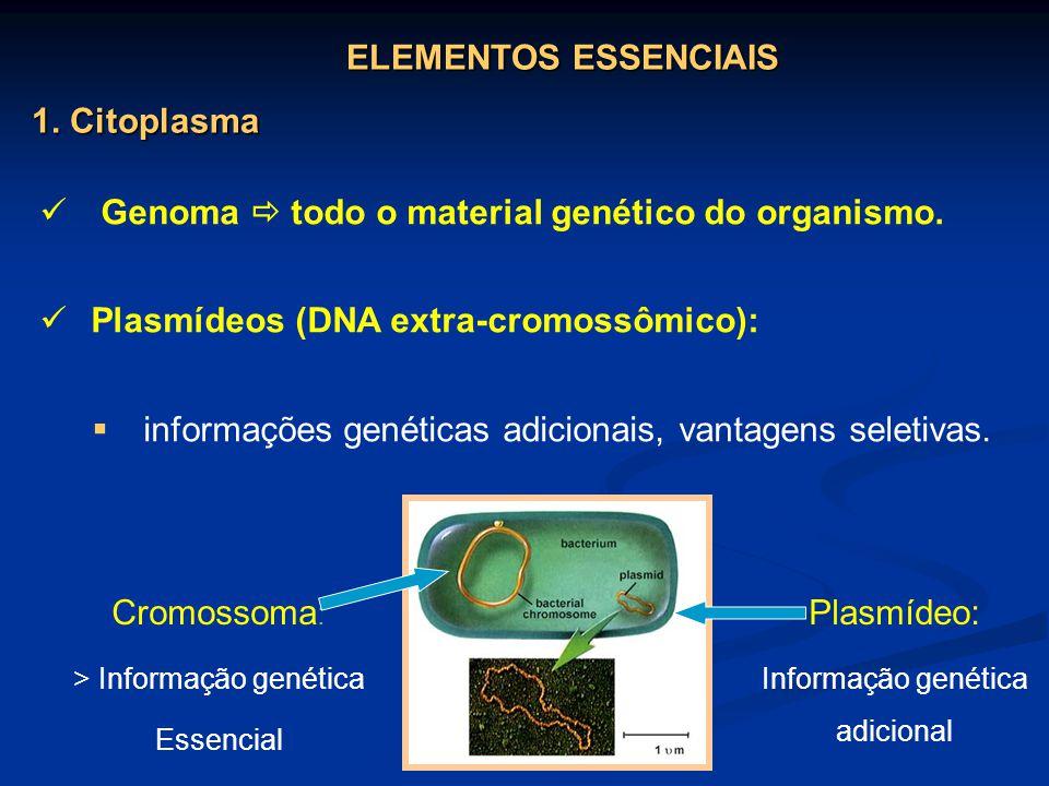 Genoma  todo o material genético do organismo.