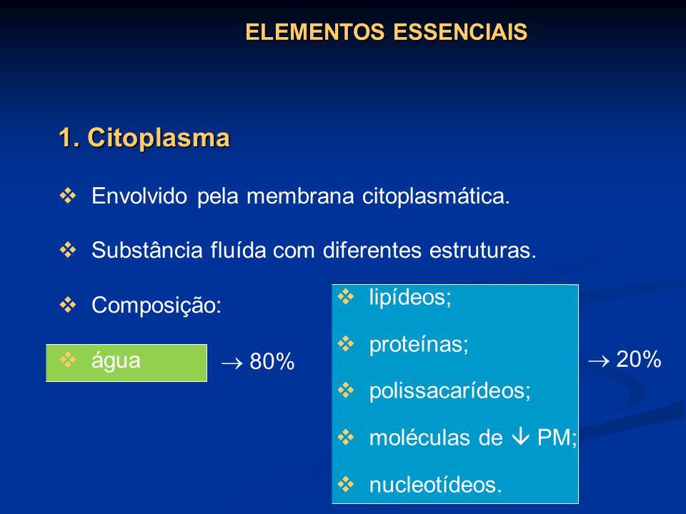 1. Citoplasma ELEMENTOS ESSENCIAIS