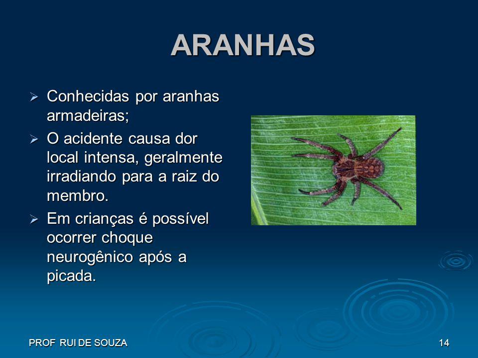 ARANHAS Conhecidas por aranhas armadeiras;