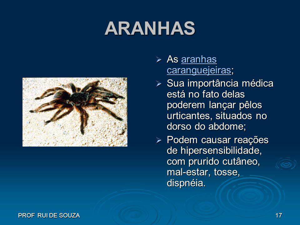 ARANHAS As aranhas caranguejeiras;