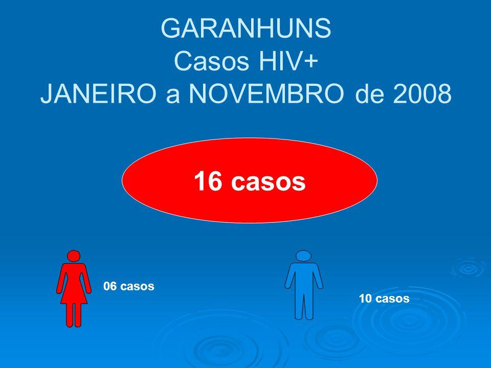 GARANHUNS Casos HIV+ JANEIRO a NOVEMBRO de 2008