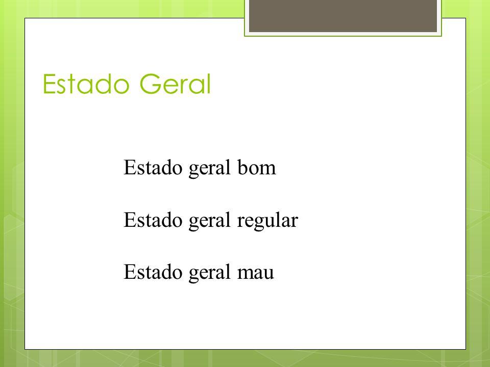 Estado Geral Estado geral bom Estado geral regular Estado geral mau