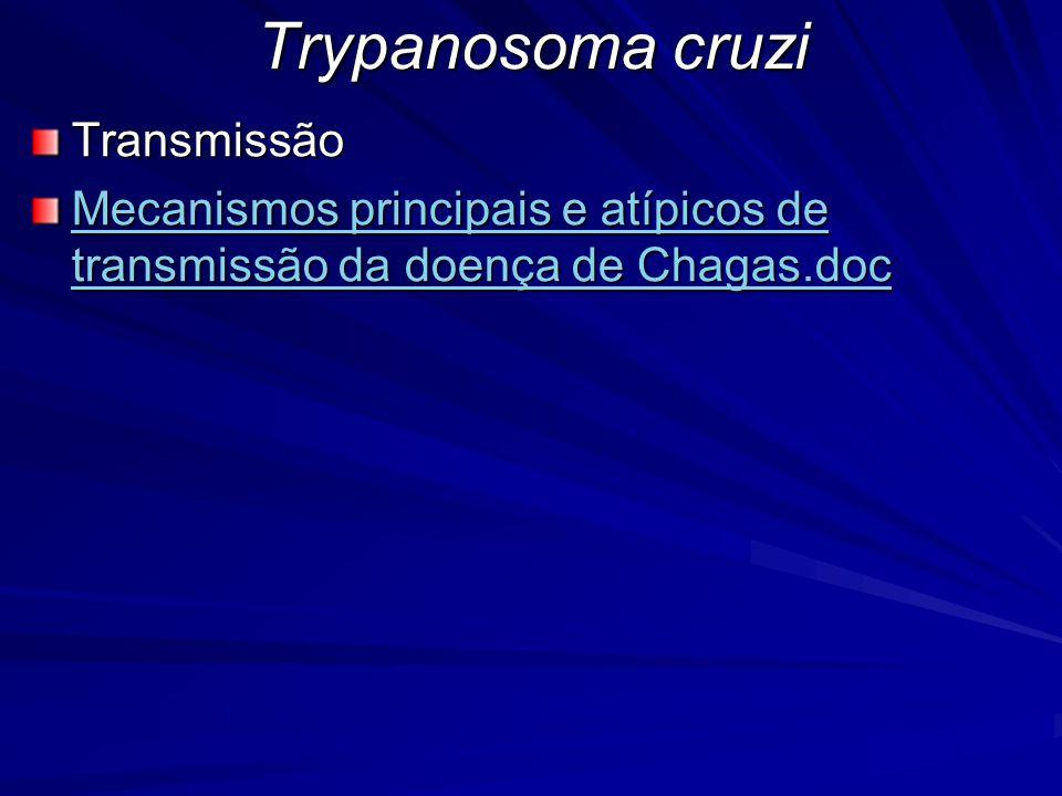 Trypanosoma cruzi Transmissão