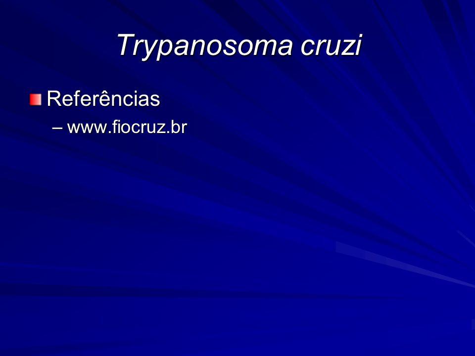 Trypanosoma cruzi Referências www.fiocruz.br