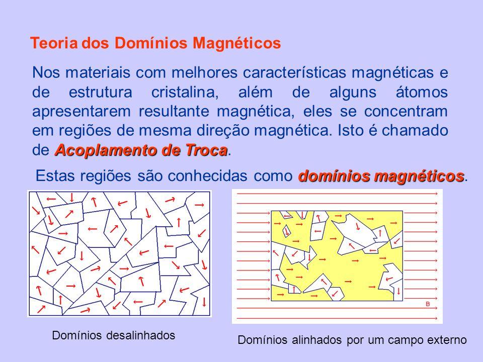 Teoria dos Domínios Magnéticos