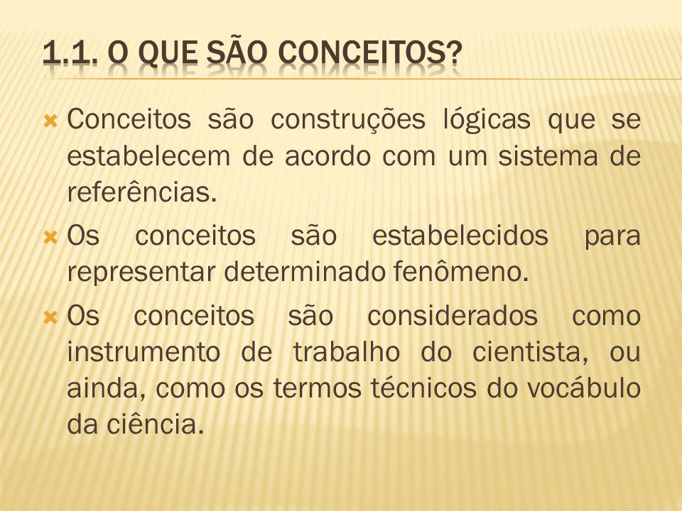 1.1. O que são conceitos Conceitos são construções lógicas que se estabelecem de acordo com um sistema de referências.