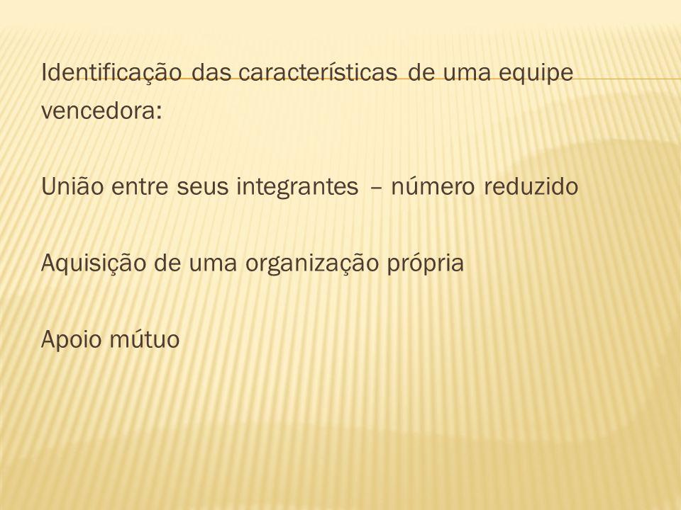 Identificação das características de uma equipe
