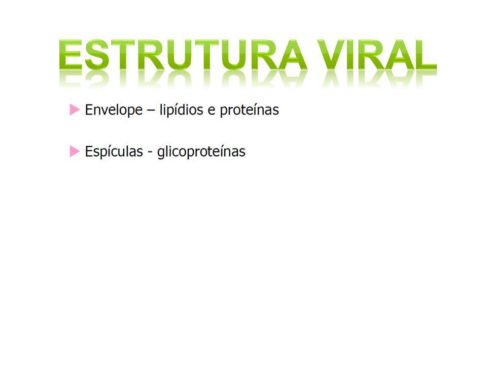 Estrutura viral 18