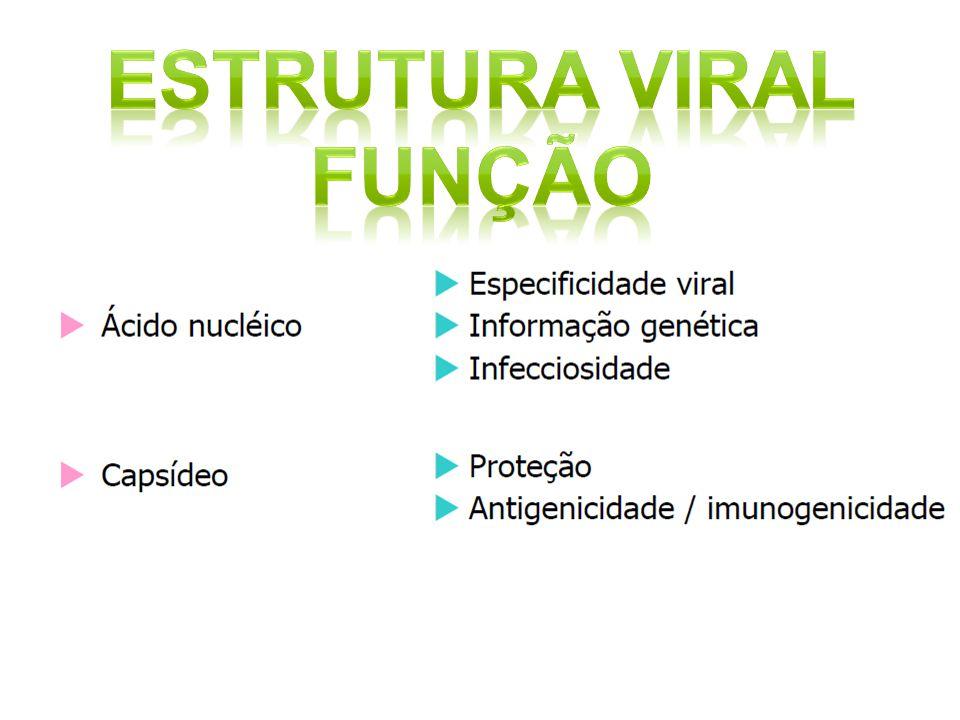 Estrutura viral Função