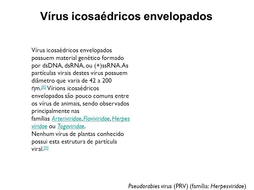 Vírus icosaédricos envelopados