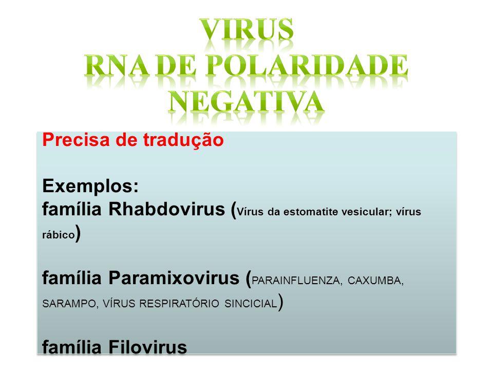 RNA DE POLARIDADE NEGATIVA