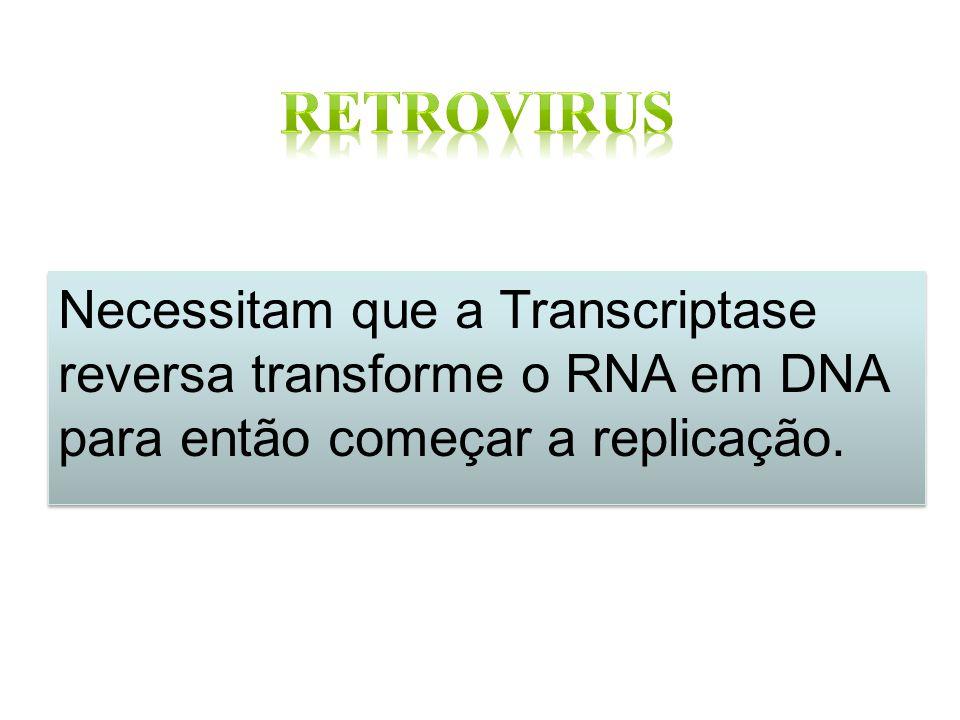 Retrovirus Necessitam que a Transcriptase reversa transforme o RNA em DNA para então começar a replicação.
